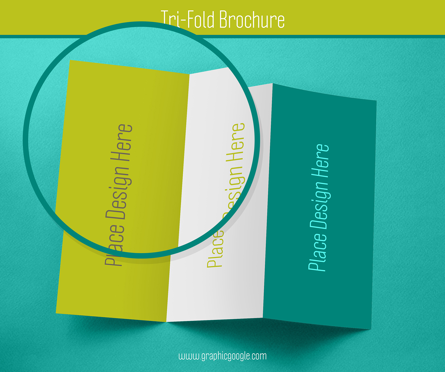 Free Tri-Fold Brochure Mockup For Graphic Designers-3