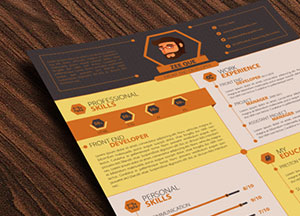 20+ Best Resume Templates For Developers-UI-Graphic & Web Designers