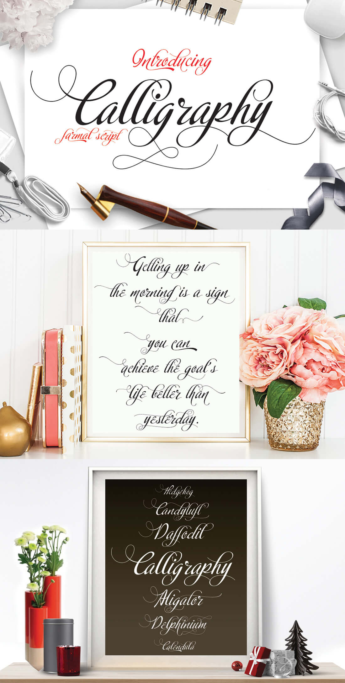 smooth-modern-classic-gorgeous-calligraphy-script-1