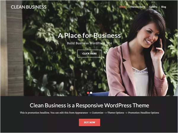 clean-business-a-clean-responsive-and-incredibly-resourceful-wordpress-theme