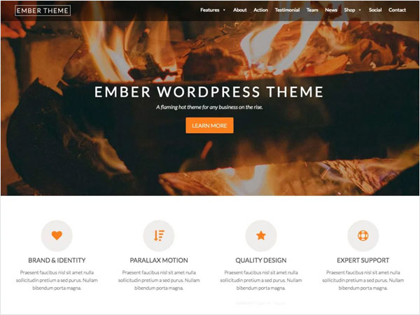 ember-a-beautiful-and-colorful-one-page-wordpress-theme-for-businesses-and-organizations