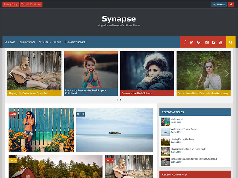 free-synapse-stylish-magazine-wordpress-theme