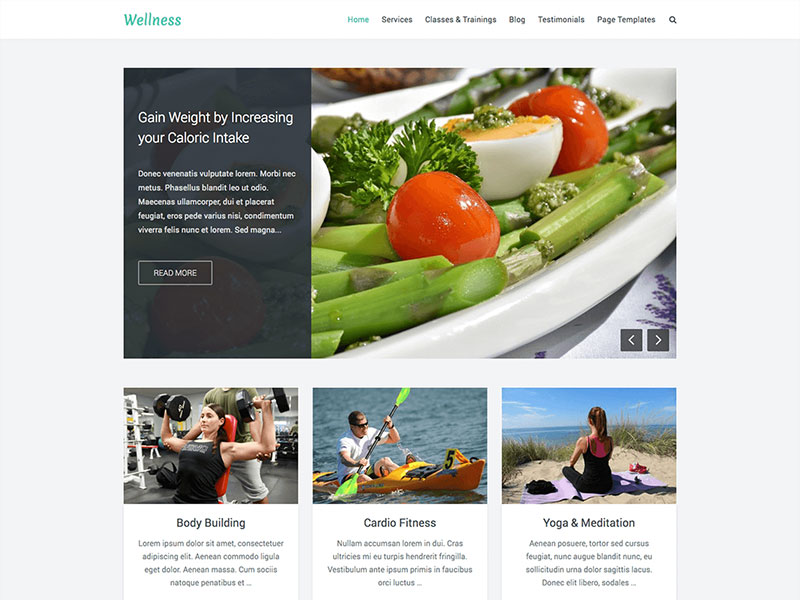 free-wellness-a-responsive-multipurpose-wordpress-theme-for-health-fitness