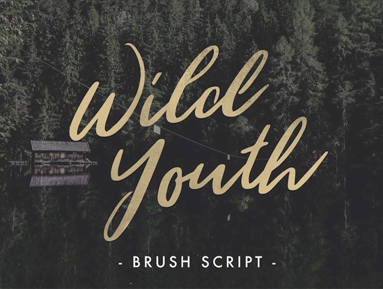 wild-youth-beautiful-hand-drawn-brush-script-font