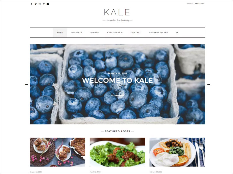 Kale-A-Charming-&-Elegant,-Aesthetically-Minimal-and-Uncluttered-Food-Blogging-Free-WordPress-Theme