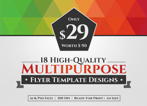 18 High Quality Multipurpose Flyer Template Designs in $29