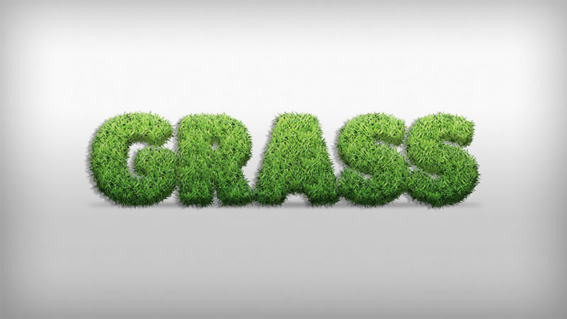 How-to-Create-a-Grass-Action-Text-Effect-in-Adobe-Photoshop