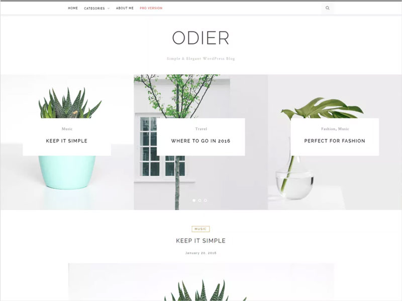 OdierLiteFree-Simple-&-Elegant-WordPress-Blog-Theme