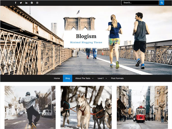 Blogism-User-Friendly-Free-Blog-Magazine-Free-WordPress-Theme