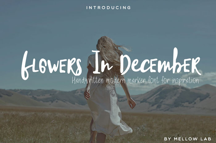 Flowers-in-December-handwritten-Modern-Marker-Font