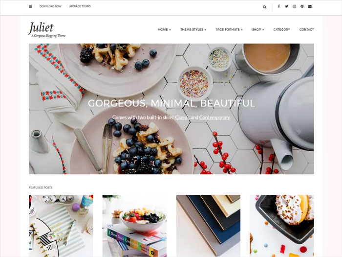 Juliet-Free-Lifestyle-WordPress-Blogging-Theme