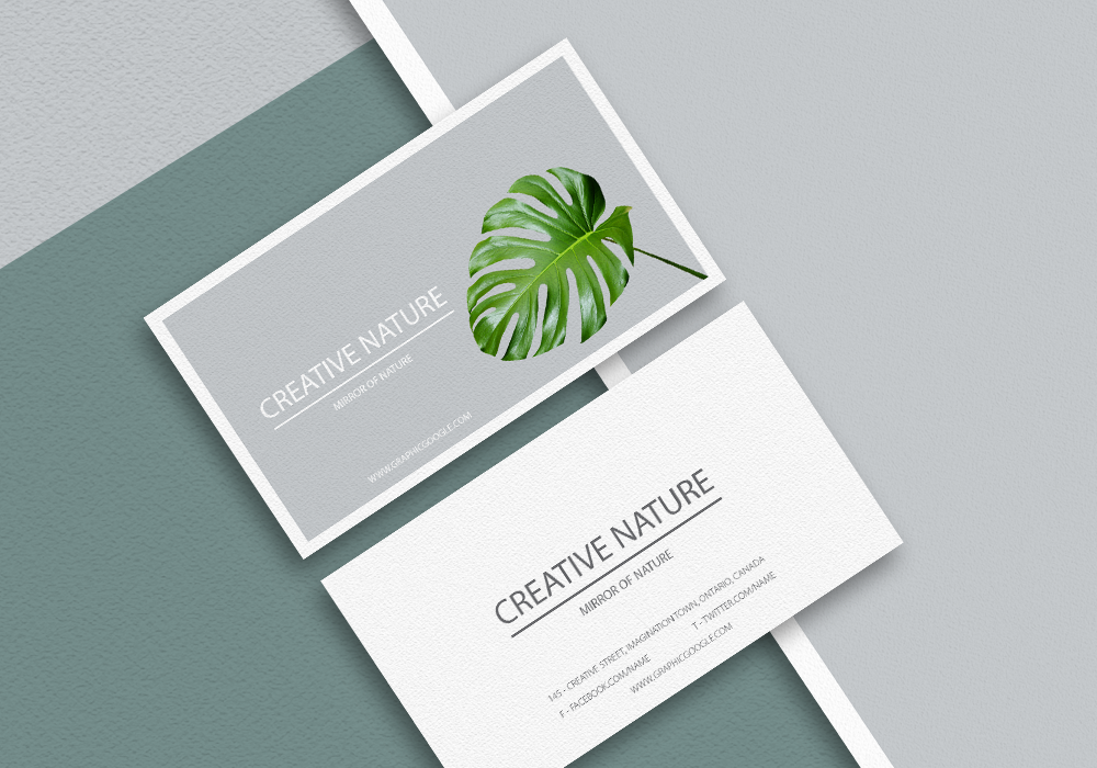 Free-Letter-Head-and-Business-card-Mockup-PSD-Preview