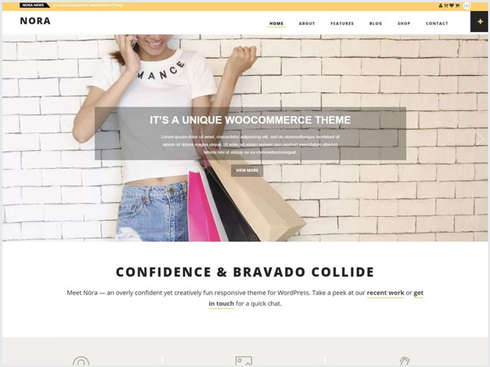 Nora-WordPress-ecommerce-theme