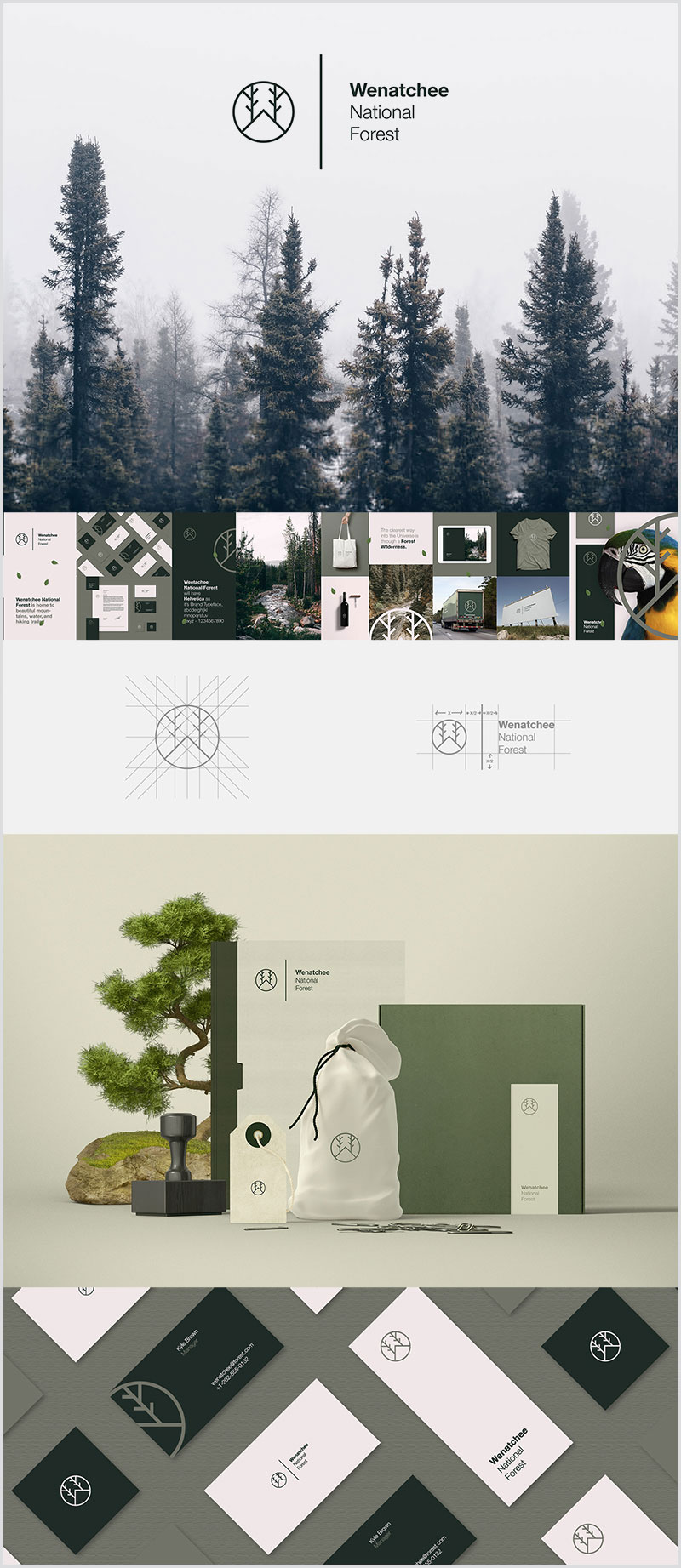 Wentachee-National-Forest-Identity-Design