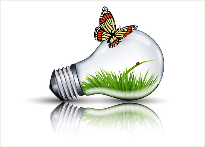 How-to-Create-an-Eco-Bulb-and-Butterfly-Illustration-in-Adobe-Illustrator