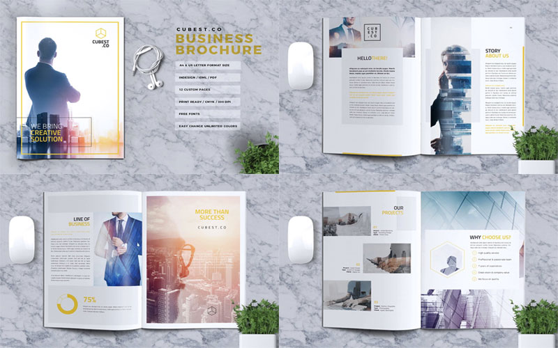 CUBEST-Business-Brochure