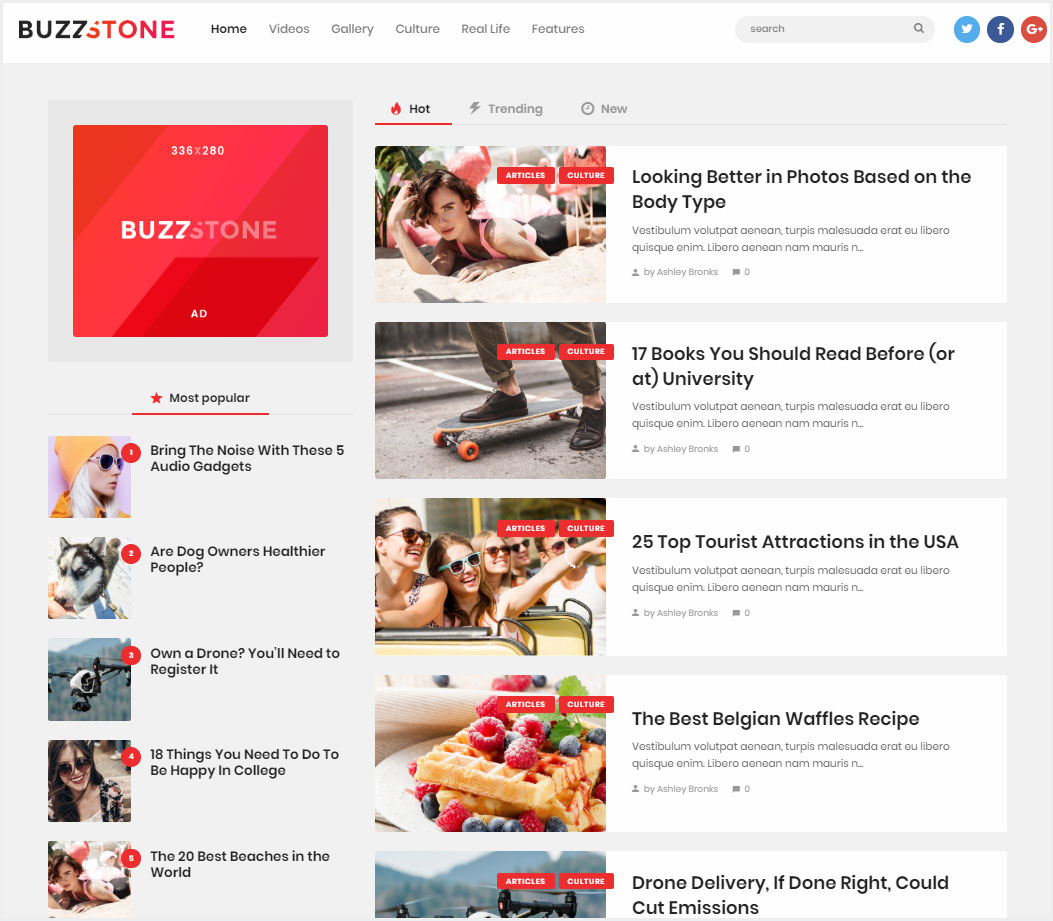 Buzz-Stone-Magazine-&-Viral-Blog-WordPress-Theme