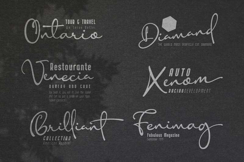 Gorgeous-Anisha-Modern-Sans-And-A-Stylish-Calligraphy-Font-10