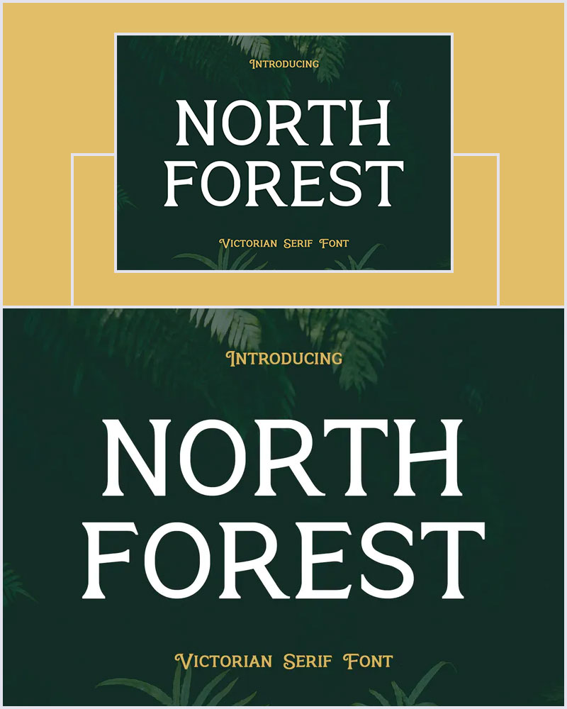 North-Forest-Vintage-Modern-Serif-Font