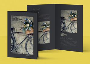 Free PSD Bi-Fold A4 Brochure MockUp