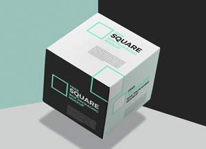 Square-Box-Packaging-Mockup.jpg