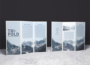 Free 2 Sided Tri-Fold Brochure Mockup PSD #1