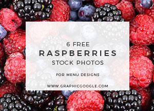 6 Free Raspberries Stock Photos For Menu Designs