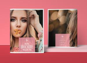 Free-Brand-Brochure-Mockup-PSD-300.jpg