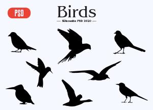Free-Birds-Silhouette-PSD-2020-300.jpg