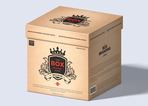 Free-Brand-Box-Packaging-Mockup-300.jpg